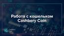 Инструкция по работе с кошельком Cashbery Coin