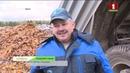 На маштабную ўборку апалай лістоты на вуліцы Мінска выехала спецтэхніка. КРАІНА