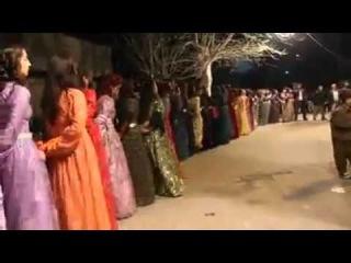 Kürt Kızlarından Muhteşem Halay (Govenda Keçên Kurd)