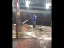 В Краснодаре мужчина помыл собаку струей высокого давления