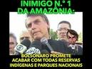 Bolsonaro quer permitir mais destruição da Amazônia pra favorecer ruralistas: A floresta corre risco