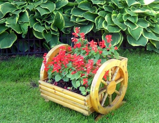 Дачные идеи для украшения сада