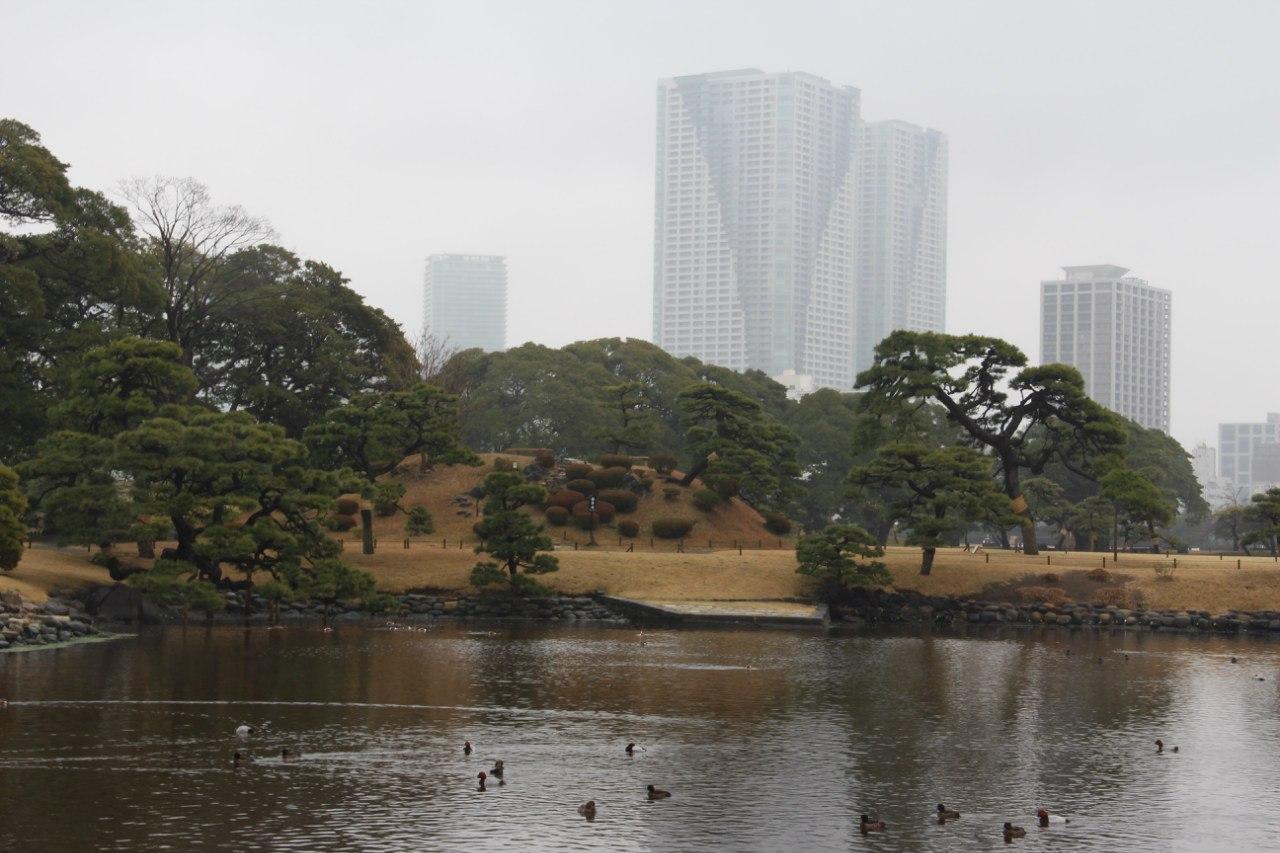 Смотреть бесплатно 500 пар одновременно япония 15 фотография