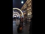 Уличный музыкант в Питере играет