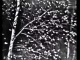 Зоя Харабадзе и Инна Мясникова - Всё потому (муз. Павла Аедоницкого - ст. Игоря Шаферана и Павла Аедоницкого)