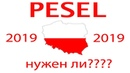 INFO 1 PESEL как оформить и нужен ли он в Польше в 2019 году