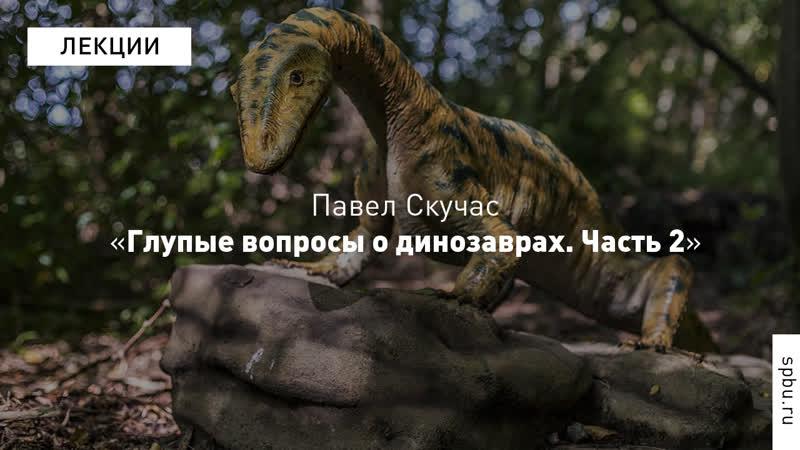 Глупые вопросы умным людям: Павел Скучас, палеонтолог. Часть 2