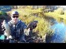 Ловля карася в октябре карась осенью Рыбалка на карася