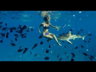 Matt + Kim - Bora Bora wedding :: untitled film works