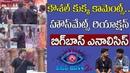 Bigg Boss 2 Analysis On Kaushal Comments Housmates Reactions Telugu Bigg Boss Season 2 Updates