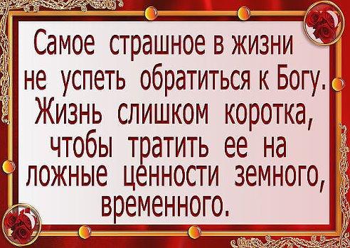 http://cs314121.vk.me/v314121451/7aa9/synMtuQ-LLI.jpg