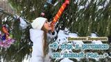 О чем я мечтаю на Новый Год... (Анастасия Королькова)