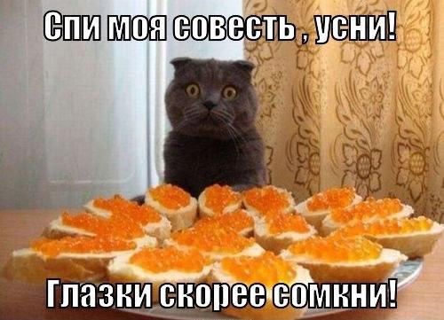 http://cs402131.vk.me/v402131994/3657/8Bl6-hXHRSc.jpg