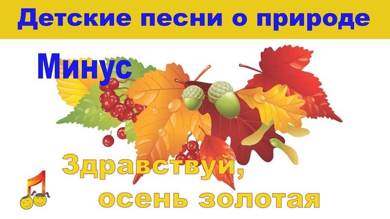 🎥🍂Здравствуй осень золотая 🍂🍂Минус🎶