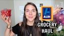 CHEAP $25 VEGAN GROCERY HAUL (ALDI)