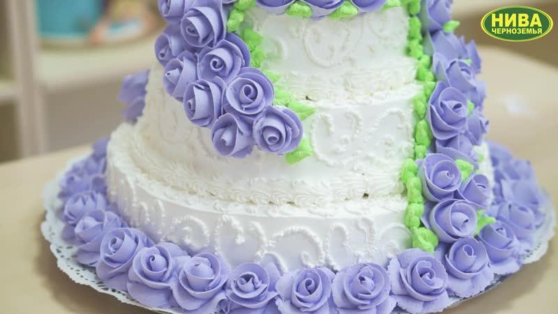 свад торт