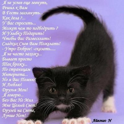 Татьяна Татьянина, 26 октября 1978, Санкт-Петербург, id71406383