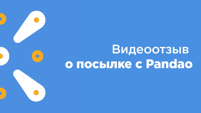 Полина Коновалова