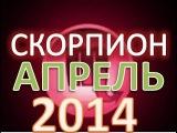 гороскоп скорпион апрель 2014 гороскоп. астрологический прогноз для знака скорпион на апрель 2014