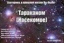 Екатерина Лаптева фото #46