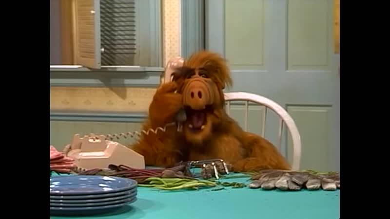 Alf Quote Season 1 Episode 18 Секретарь