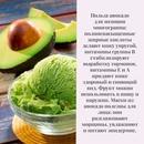 5 причин, по которым вы захотите добавить авокадо в свой ежедневный рацион!