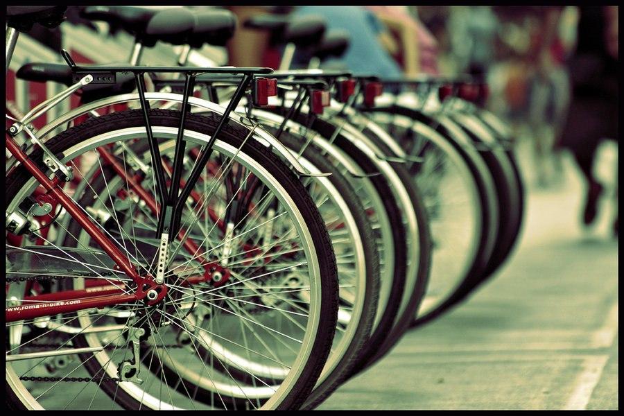 Таганрожцам предлагают отметить Всемирный день без автомобиля