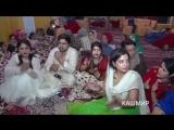 Part 1 / Вот так люди Кашмира празднуют свои свадебные церемонии..