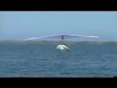 Дельтаплан резиновая лодка с мотором = как-то не очень