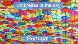 Umbrellas in sky Portugal, Agueda 2018.