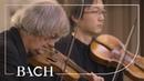 Bach Cantata Die Elenden sollen essen BWV 75 Kuijken Netherlands Bach Society