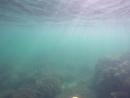 Фиолент Подводный транспорт