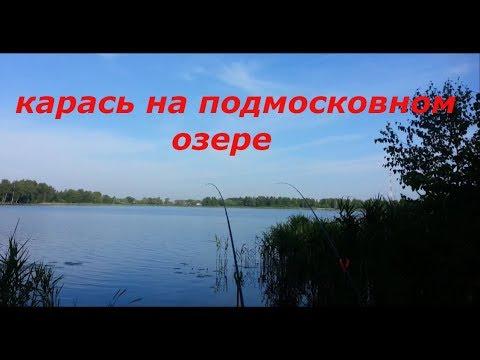 Ловля карася на подмосковном озере. Июль 2018. рыбалка