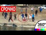 Появилось видео убийства борца Юрия Власко (18+)
