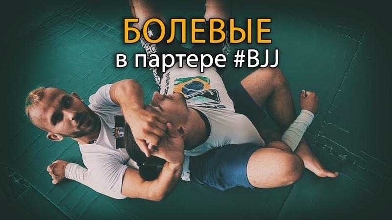 Бразильское Джиу-Джитсу: болевые и удушающие приемы в партере ,hfpbkmcrjt l;be-l;bnce: ,jktdst b eleif.obt ghbtvs d gfhntht ,hfp