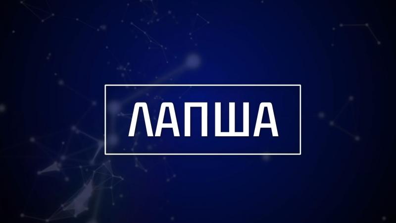 Вечерний стрим «Лапша». В гостях Наталья Васильева.