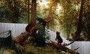 """Взять картину Шишкина  """"Утро в сосновом лесу """" и наляпать"""
