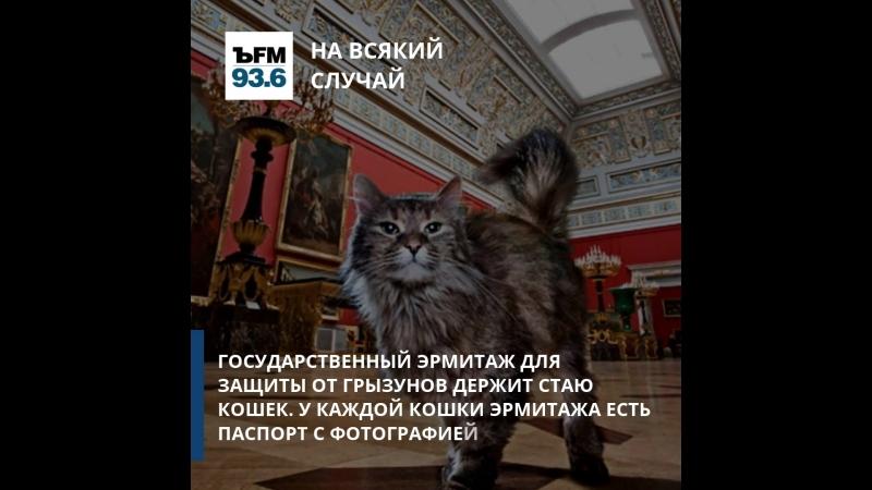 ЪFM. На всякий случай. Парковая зона Москвы, МГУ и кошки Эрмитажа