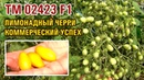TM 02423 F1 ЛИМОНАДНЫЙ ЧЕРРИ КОММЕРЧЕСКИЙ УСПЕХ 01 10 2018