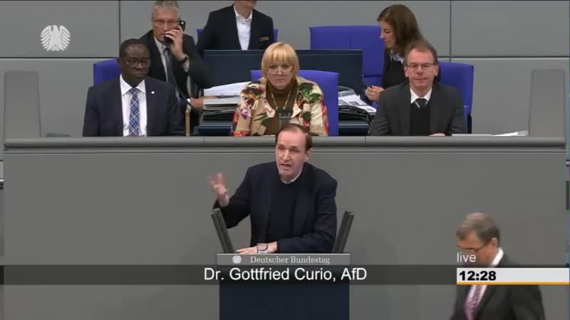 2018.11.29 - Dr. Gottfried Curio (AfD) spricht im Bundestag und die Altparteien schreien vor Wut. 29.11.2018