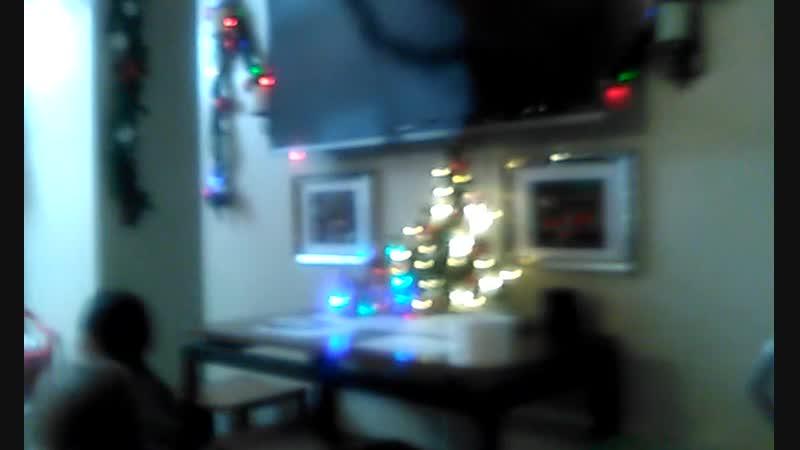 Дома Рождество 25.12. 2017. (Малибу, Калифорния) Ждем гостей. Ищем собаку куки (печенька) которая затерялась где-то в доме))