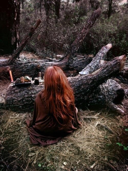 Мудрость приходит вместе со способностью быть спокойным.