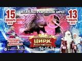 Легендарный цирк Юрия Никулина в Кирове!