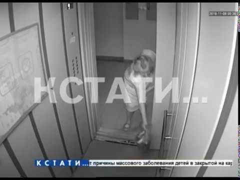 Нижегородская шапокляк превратила лифт в передвижной мусоропровод