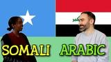 Similarities Between Somali and Arabic