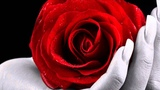 Hayley Westenra ~My heart belongs to you~