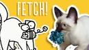 Cats That Play Fetch Simon's Cat Snaps FAN VIDEOS