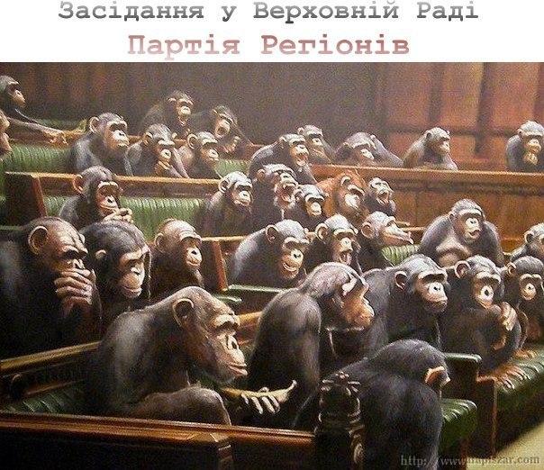 Засідання у Верховній Раді Партія регіонів