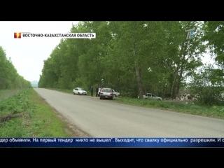 Жительницу Усть-каменогорска возмутила огромная свалка вдоль трассы