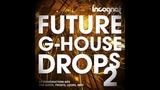 Future G-House Drols Vol.2 Samples